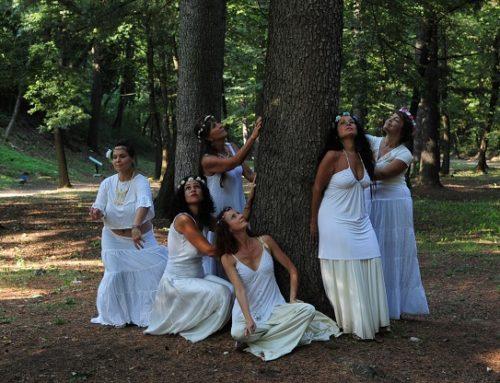 I corsi e i seminari di danza orientale dell'associazione ARMONIA